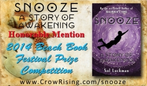 Summer Reading: SNOOZE Recognized in Beach Book Festival Prize Competition