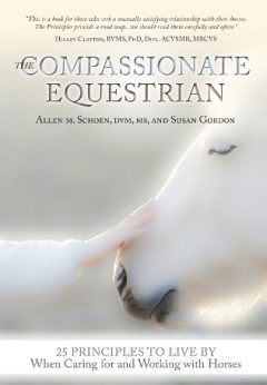 Introducing THE COMPASSIONATEEQUESTRIAN