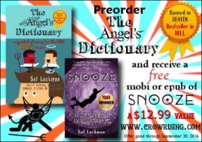 Preorder THE ANGEL'S DICTIONARY & Receive a Free Ebook of the Award-winning Novel SNOOZE