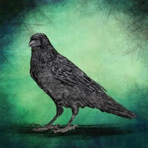Crow's God: Ego Dissolution & the Evolution of the Self