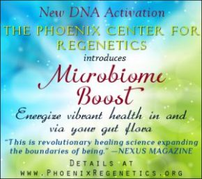 Energize Vibrant Health in & via Your Gut Flora with Microbiome Boost